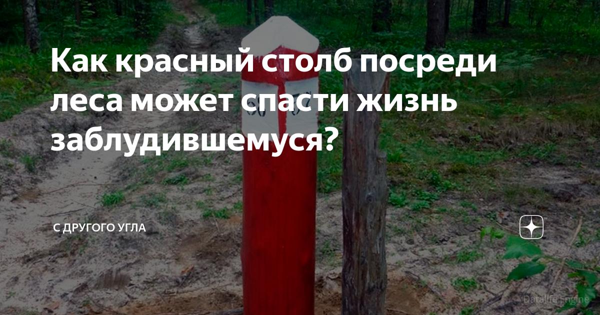 Как красный столб посреди леса может спасти жизнь заблудившемуся?